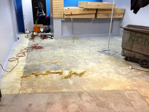 Quality Mettalic Epoxy Floor at All Mobile Matters, Chandler, AZ